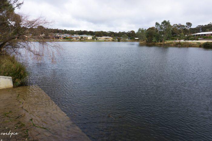 Forest Lake Kangaroo flat