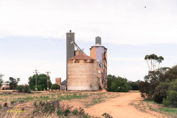 Patchewollock silo art silo trail 2019 3