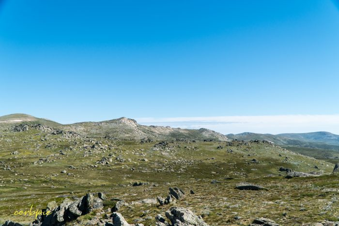 the lookout Mt Kosciuszko Summer 2019
