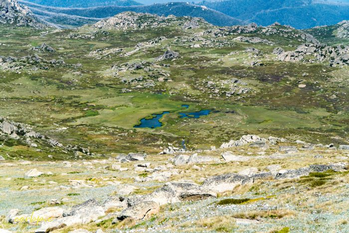 view from the top Mt Kosciuszko Summer 2019 2